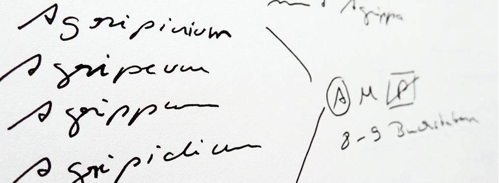 Naming Agrippeum